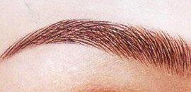 Orientation des poils du sourcil